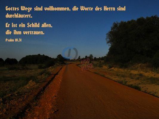 437 - Psalm 18,31